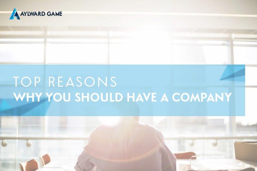 Top Reasons Why You Should Setup a Company